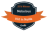 Top Mobile Developers Noida Mobulous