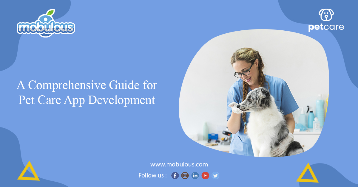Guide for Pet Care App Development