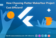 Flutter Makes Your Project Cost Efficient