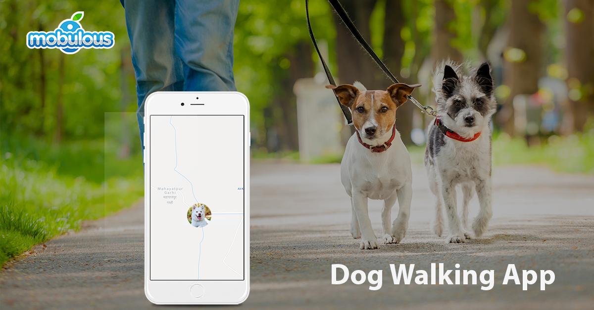 dog-walking-app