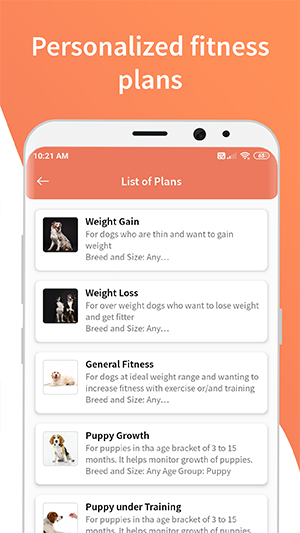 personalized fitness plans